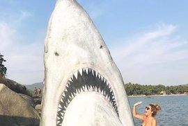 Kamenný žralok na pobřeží Palolem Beach v Indii