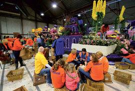 Na přípravě výpravných květinových vozů pracují po tři dny na směny celé týmy dobrovolníků.