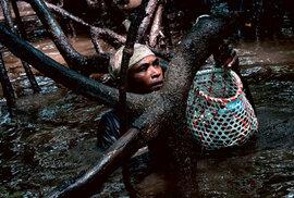 Concheros: Do bahna mangrovových porostů s kolumbijskými sběrači mušlí