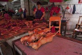 Každý rok pořádají v Číně velký festival liči a psího masa.