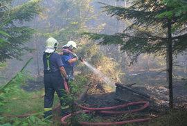 Ve Skřipově na Opavsku hořel les, škoda je za tři miliony.