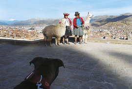 """""""Můj pes Tekýsek nad bývalým hlavním městem říše Inků..."""""""
