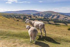 Putování pohořím Brecon Beacons aneb V ovčím ráji jižního Walesu