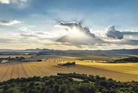 Pohled na kopce obklopené zlatavými lány obilí má zvláštní poetiku