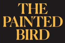 Fotografie z nové knihy The Painted Bird – Photography essay.