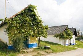 Stará hora: Areál vinných sklepů v obci Blatnice patří k nejlépe dochovaným stavbám…