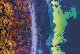 Hranice moře a zbarveného listí vypadá z výšky úchvatně
