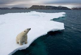 Špicberky: Na odlehlé norské souostroví za ledními medvědy a magickou polární září