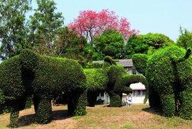 Křížem krážem po Thajském království: Neváhejte a nastupte aneb Kouzlo kombinované …