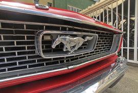 Ikonické logo Fordu Mustang není vidět jenom na těchto sportovních vozech. Často si logem zdobí kolumbijští řidiči autobusů své pracoviště za volantem.