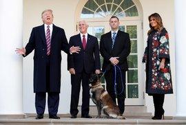 Trump udělil medaili psovi, který pomohl dopadnout Bagdádího. Při operaci zemřely i…