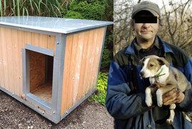 Do nocleháren v Brně si bezdomovci mohou vzít i své psy, město pro ně zřizuje zateplené boudy