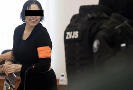 Alena Zs. u soudu.