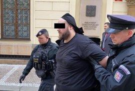 Policisté zadržují útočníka u vchodu do poslanecké sněmovny.