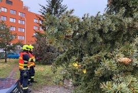 Na budovu dětského domova se školou v ulici Jana Masaryka v Praze na Vinohradech spadl strom, 10. února 2020.