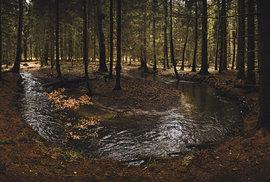 Luha meandruje v lesích severně od hranic Moravského krasu