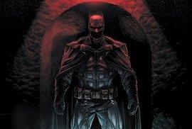 Batman si na nic nevzpomíná... a čím více se noří do labyrintu tohoto případu, tím více pochybuje o všem, co se dozvídá.