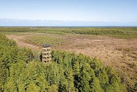 Dřevěná rozhledna v národním parku Lahemaa