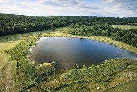 Rybník u Benešova