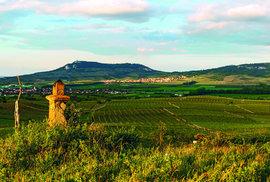 Jeden z nejkrásnějších výhledů na panoráma Pálavy je z Dunajovických kopců