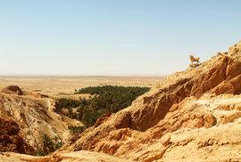 Tuniská horská oáza Chebika