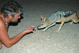 Tělo malého lovce se jako pružina pomalu natahuje k ruce s lákavým soustem. Kdykoli je ale připraven uskočit do bezpečí.