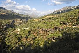 Údolí říčky Damour u vesnice Dmit
