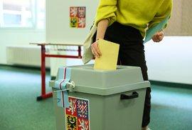 Kde sledovat sčítání hlasů? Devět nejzajímavější soubojů dnešních senátních voleb