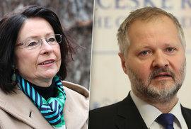 Boj o senát: Vítači migrantů, klimaalarmisté i jiní rudo-zelení kádři tlačí Hampla.…