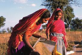 Fotoreportáž Františka Zvardoně: Princezny pouště Thár aneb Nelehký život žen a dívek v indickém státě Rádžastán