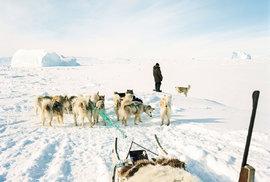 Grónský lov