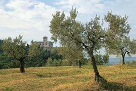 V klášterním objektu se nacházejí hned dva majestátní kostely.
