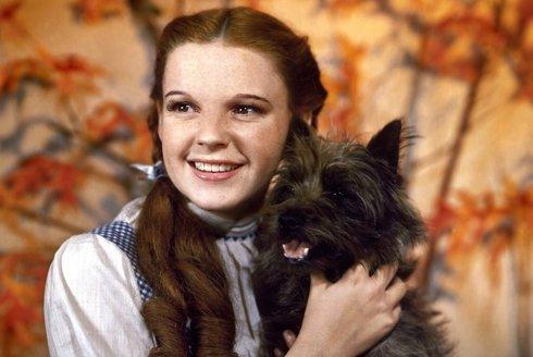 Výlet do země Oz: Nejslavnější americké fantasy