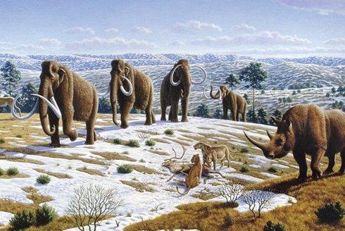 Mamuty vyhubila tráva: Co prozradila věčně zmrzlá půda