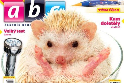 Co bude v ABC č. 4:  Pichlavý mazlíček