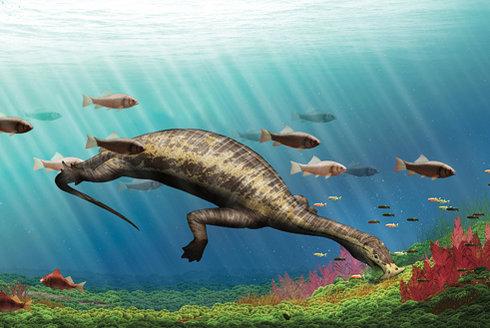 Pravěký vysavač: Nejstarší mořský vegetarián