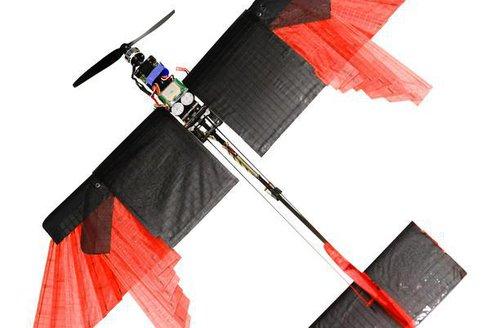 Opeřený dron na nebi