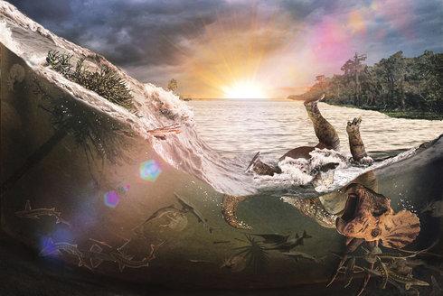Dinosauří pohřebiště: Místa dávné zkázy