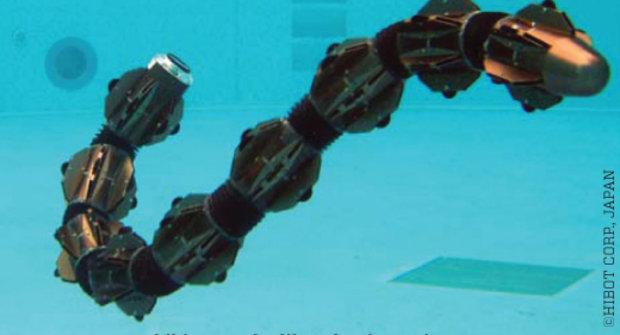 Vodní had nebo hadicový robot?