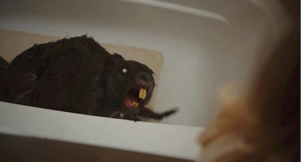 Šílená upoutávka na šíleně směšný horor s neživými zombie bobry