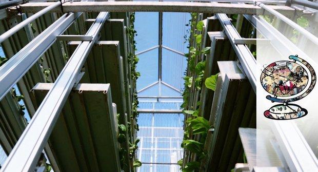 Moderní vynález: Vertikální farma v Singapuru