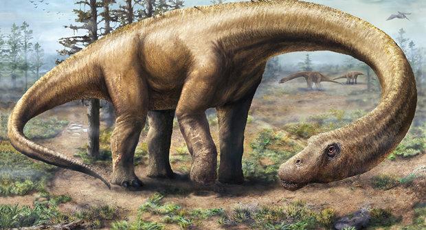 Objev největšího dinosaura: Tyrannosaurus je najednou prcek!