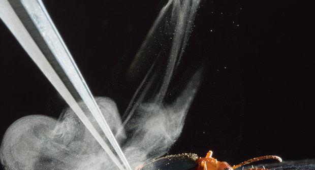 Ostrostřelci: Brouci s chemickým kulometem