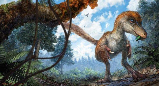 99 miliónů let staré dinosauří peří