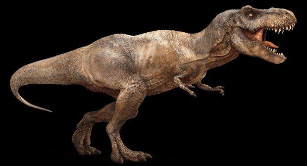 Nový objev: Tyranosaurus rex nemohl běhat!