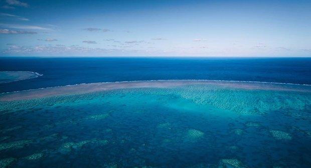 Korálové útesy: Oceánská obdoba deštných pralesů