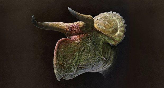 Dinosauří paráda: Na co měli rohy?