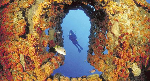 Překvapení na útesu: Objev záhadné podmořské zóny