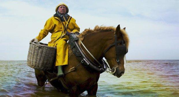 Mořský kůň: Když je rybář zároveň jezdcem