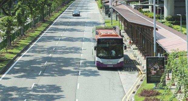 Zeleň v pohybu: Autobusy se zahradami na střeše